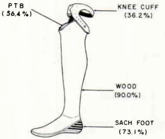 Popup on foot and ankle diagram